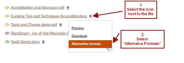 Canvas Documents showing the alt format icon next to each with a callout menu showing the