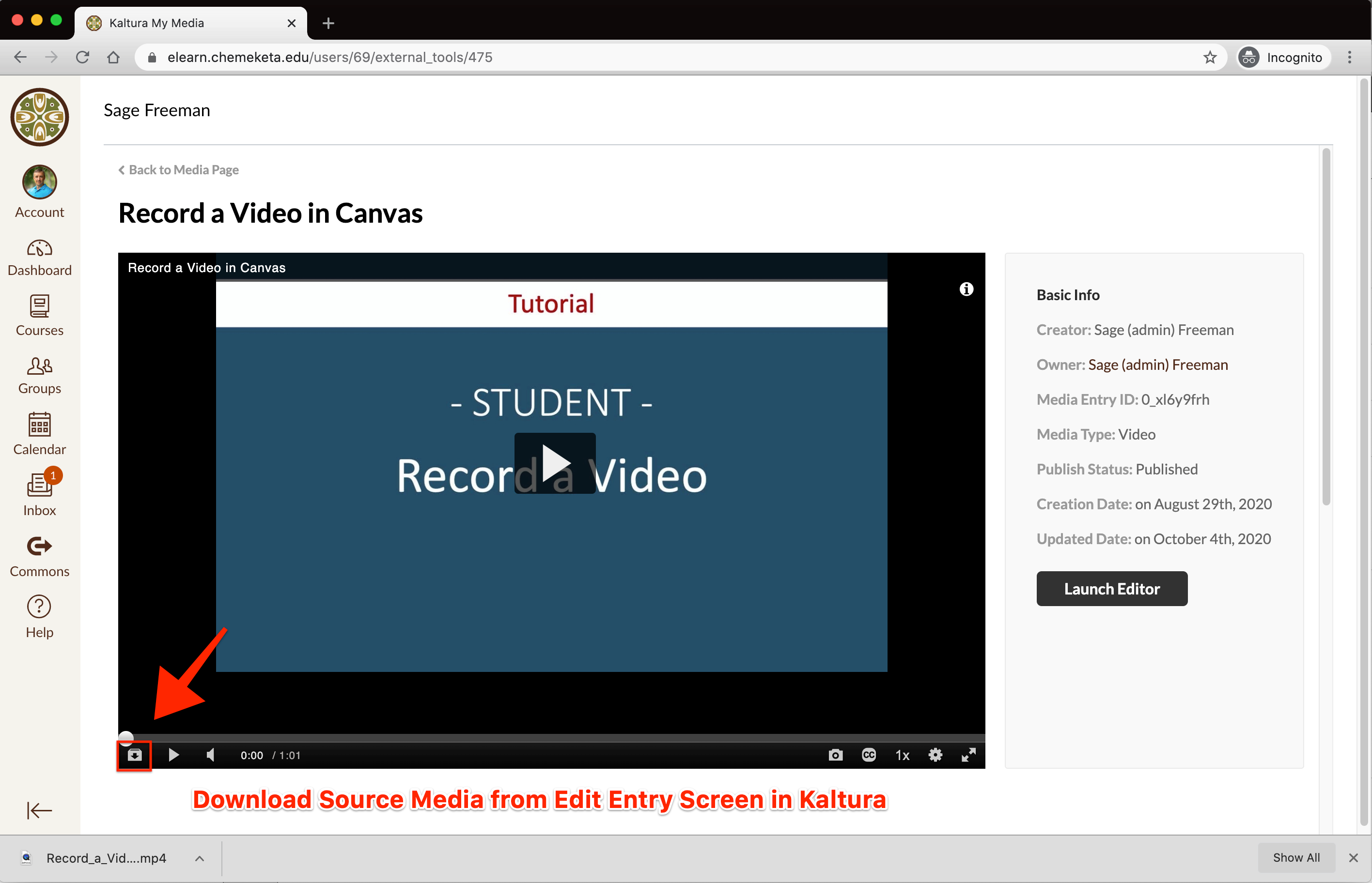 Screenshot showing the Download Media button in the Kaltura Video Video Player Controls fromt he Edit Media Entry page in Canvas