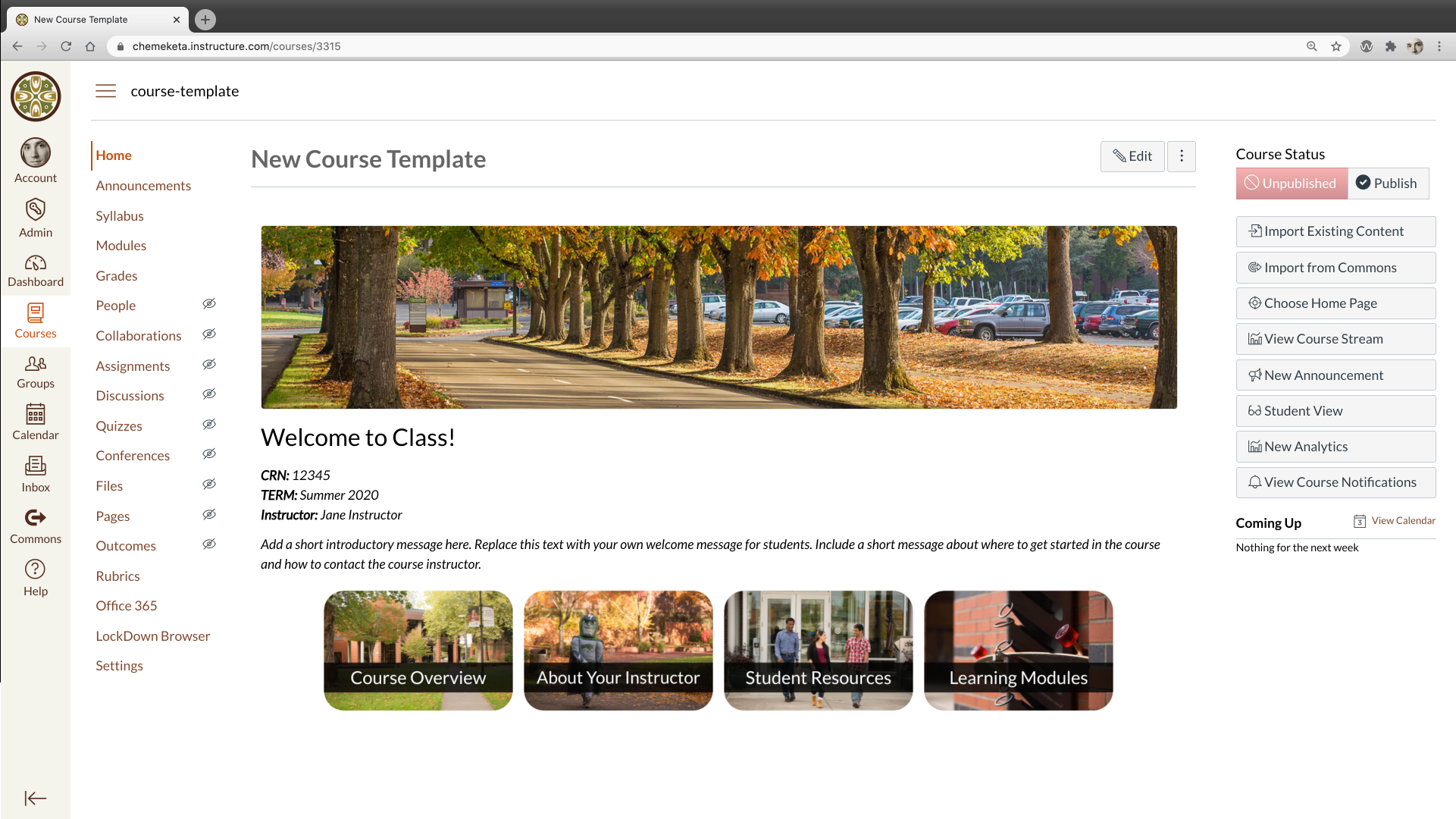 Screenshot above showing the Canvas New Course Template homepage from Fall 2020.