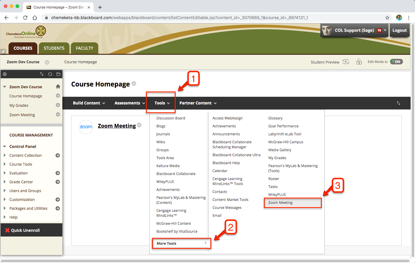 Screenshot showing menu options to add the Zoom tool to an eLearn course.